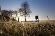Stock Photo of Germany, North Rhine-Westphalia, Bergisches Land, raised hide at morning mist
