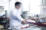 Stock Photo of Female food analyst working in laboratory