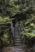 New Zealand, Abel Tasman Nationalpark, view to old stairs - stock photo