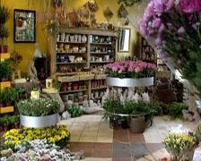 Flower shop interior - tilt down Stock Footage