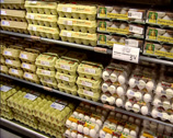 Stock Video Footage of dairy display, egg assortment in supermarket, tilt up