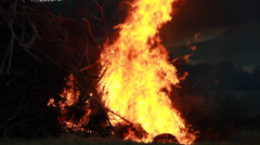 Big Fire Elements - Evolving Flames 002 Stock Footage