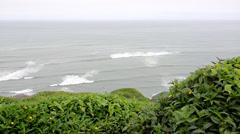 Lima Peru, Green coast Stock Footage
