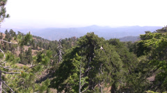 View over the forest canopy in Troodos mountains Stock Footage