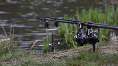Carp / Coarse fishing rods on the bank of a pond / lake Stock Footage
