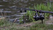 Stock Video Footage of Carp / Coarse fishing rods on the bank of a pond / lake