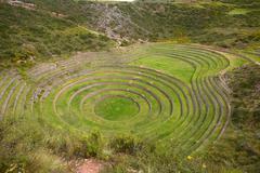 Inca agriculture field Stock Photos