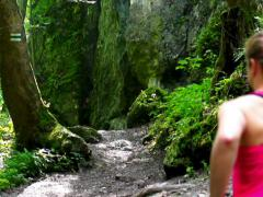 Woman running in forest, steadycam shot, slow motion shot at 60fps Stock Footage