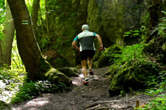 Man running in the forest, steadycam shot, slow motion shot at 240fps Stock Footage