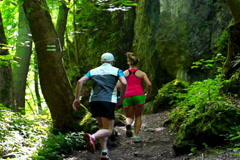 Couple exercising in forest, steadycam shot, slow motion shot at 240fps Stock Footage