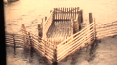 Vintage 16mm film, Native American fish trap Stock Footage