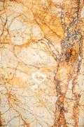 Beautiful white marble background or texture (ceramic tile) Stock Photos