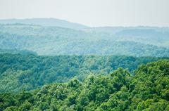 along the blue ridge parkway south of roanoke - stock photo