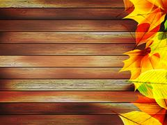 Autumn leaves over old wooden. plus EPS10 Stock Illustration