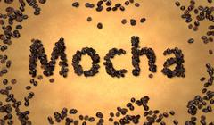 Mocha Coffee Bean on Old Paper - stock illustration