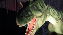 1440 Animatronic T-Rex Dinosaur Stock Footage