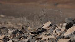 Waste Land - Rocks Stock Footage