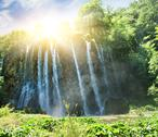 Stock Illustration of sunrise over waterfall in wild forest