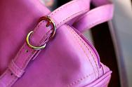 Stock Photo of Pink Lady Bag