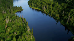 Aerial view of remote spruce forest wilderness, USA Stock Footage