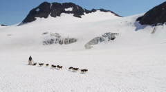Aerial view team of Alaskan Malamutes dogsledding, USA Stock Footage
