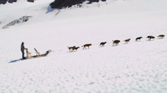 Aerial view team of Alaskan Husky dogsledding, USA Stock Footage