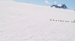 Aerial view dogsledding, Alaska Stock Footage