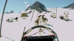 POV from Alaskan dogsledding  team base camp, Alaska Stock Footage
