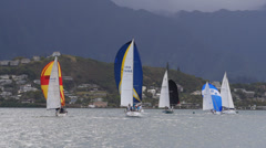 Sailboat, race, kaneohe bay, oahu, hawaii. Stock Footage