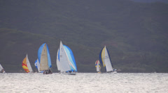 Sailboat, race, kaneohe bay, oahu, hawaii. Stock Footage