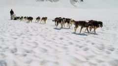 Dogsledding team in motion high mountain pass, Alaska - stock footage