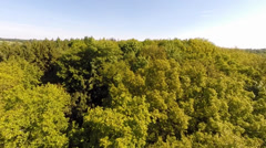 Low level flight over the tree tops of a forest Stock Footage