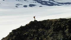 Aerial view of successful individual male climber Alaska, USA - stock footage