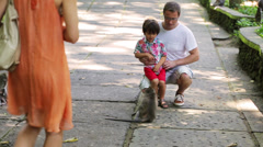Family in exotic place looking on monkeys, Bali, Indonesia Stock Footage