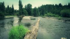 River flow in the forest. Clean water environment.  Aerial shot Stock Footage