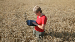 Agricultural expert inspect wheat, using laptop Stock Footage