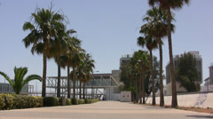Promenade with palm trees in Limassol Stock Footage