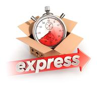 3d express delivery concept - stock illustration