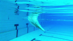 Professional swimmer doing butterfly stroke Stock Footage