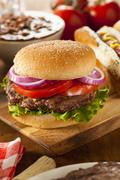 Hearty grilled hamburger with lettuce and tomato Stock Photos