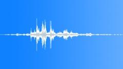 Swallows. Thunder. Sound Effect