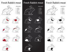 Fresh rabbit cuts parts diagram - info-grapic Stock Illustration