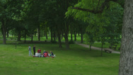 Friends on the lawn in park resting Stock Footage
