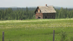Canada Alberta abandoned log house Stock Footage