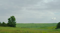 Road in the green field summer Stock Footage