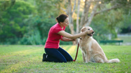 Dog and his female owner in the park doing shake Stock Footage