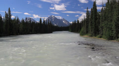 Canadian Rockies Athabasca River distant mountain Stock Footage