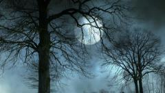Full moon night. mystic night sky. large moon background. trees silhouette Stock Footage