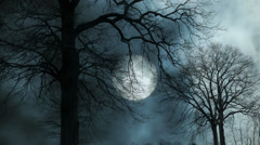 Mystic moon night sky. large moon background. trees silhouette Stock Footage