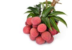 Fresh lychees isolated Stock Photos